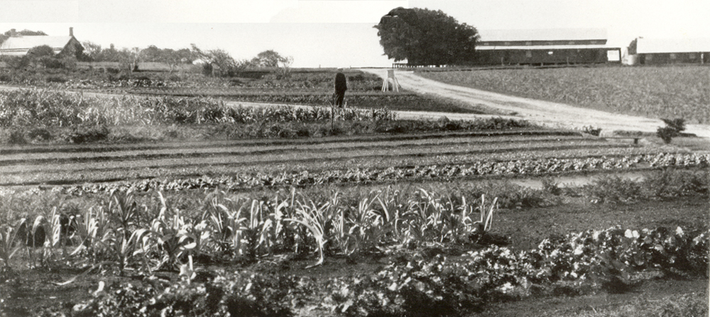 MB Fields before Barracks