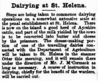 Dairy herd nla.news-article174090393.3