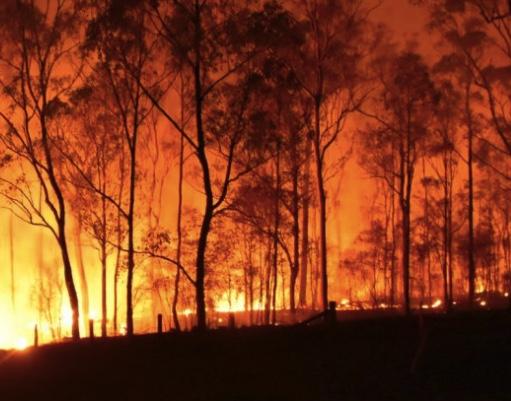Bushfire Victoria